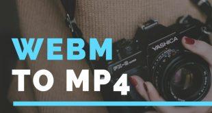 آموزش تبدیل webm به mp4 در لینوکس