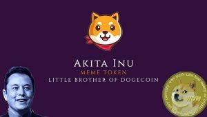 ارز دیجیتال آکیتا (AKITA INU) چیست؟ همه چیز درباره Akita Inu به زبان ساده